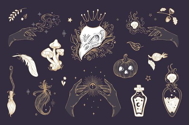 Itens mágicos vintage crânio de halloween poções de cogumelos de abóbora bruxaria astrologia mística