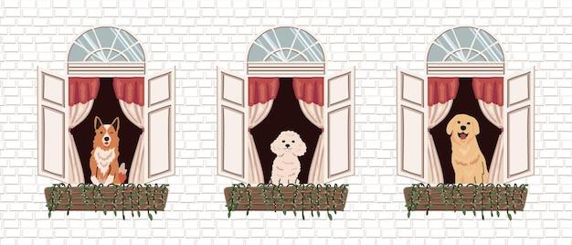 Janela desenhada à mão colorida e cão com ilustração de fundo de parede de tijolo