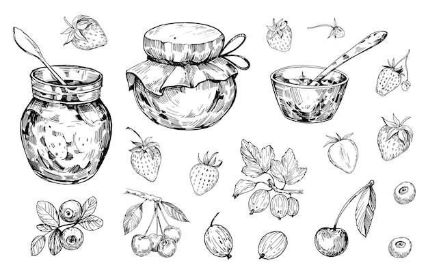 Jar com geléia e frutas. contorno desenhado à mão convertido em vetor