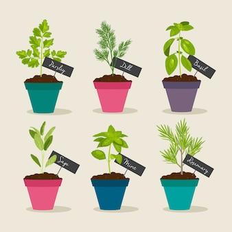 Jardim de ervas com vasos de ervas