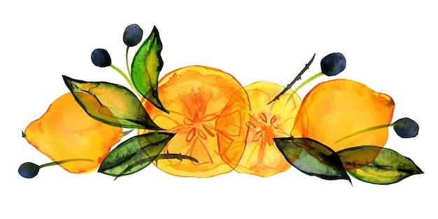 Jardim de frutas cítricas e azeitonas buquê de limões e azeitonas com aquarela traçada