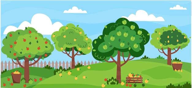 Jardim de macieiras pomar de verão com macieiras cestas de colheita de maçãs com frutas