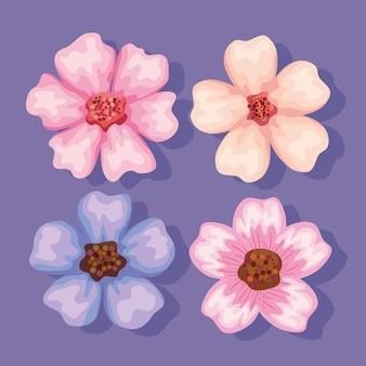 Jardim de quatro flores