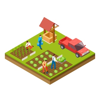 Jardinagem e colheita