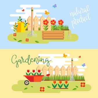 Jardinagem e horticultura, ferramentas de passatempo, caixote de legumes e plantas.