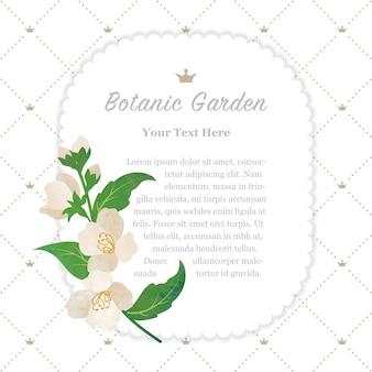 Jasmim com moldura de jardim botânico