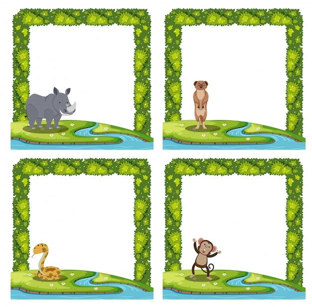Jogo, de, animal, quadro
