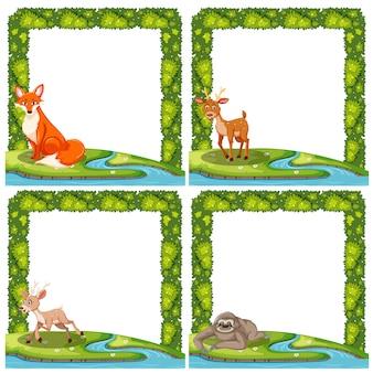 Jogo, de, animal selvagem, frame