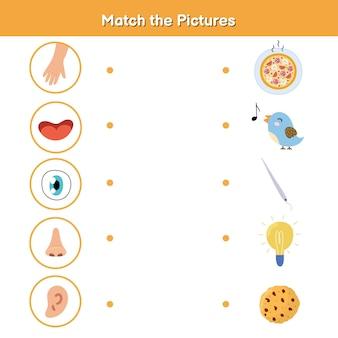 Jogo de combinação de cinco sentidos para crianças. visão, tato, audição, olfato e paladar. combine a página de atividades de fotos.