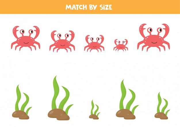 Jogo de correspondência para crianças. animais marinhos. ordenar por tamanho. caranguejo e algas.