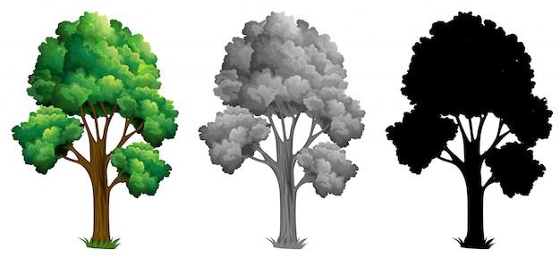 Jogo, de, isolado, árvore