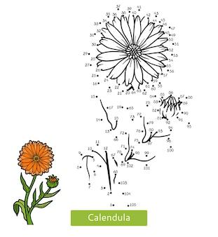 Jogo de números, jogo de educação ponto a ponto para crianças, calêndula de flores