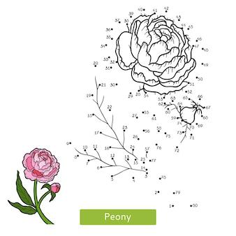 Jogo de números, jogo de educação ponto a ponto para crianças, peônia de flores