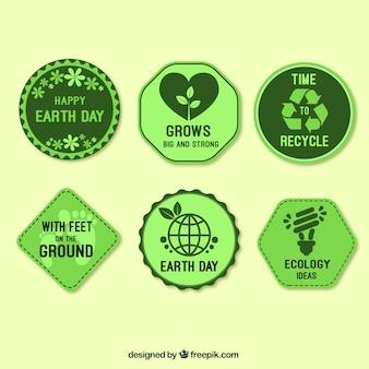 Jogo de seis etiquetas verdes para o dia mãe terra