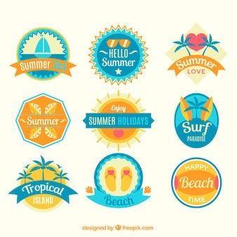 Jogo dos planos etiquetas bonitos do verão