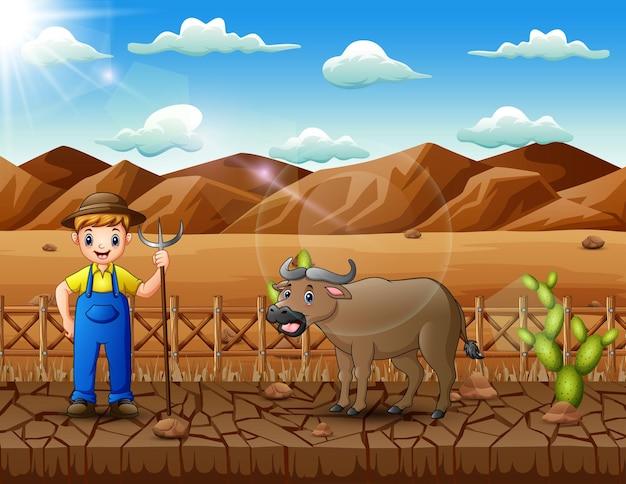 Jovem agricultor pastoreando búfalos no deserto