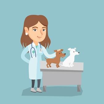 Jovem caucasiano veterinário examinando cães.