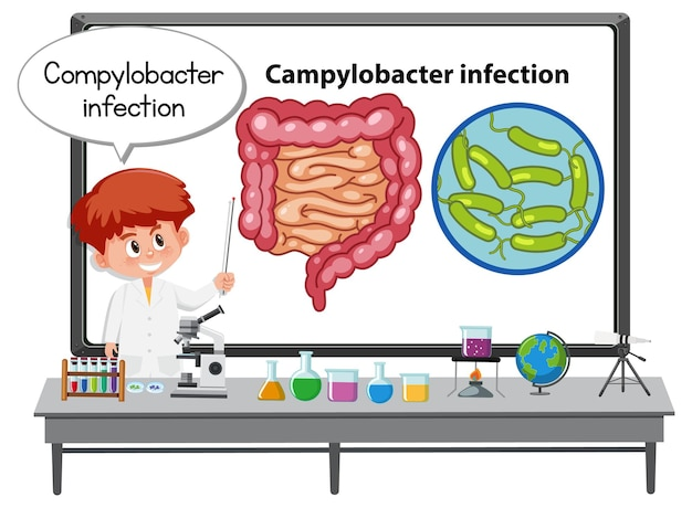 Jovem médico explicando infecção por campylobacter