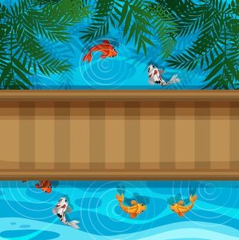 Koi peixe na lagoa com ponte