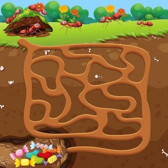Labirinto com formigas e conceito de doces