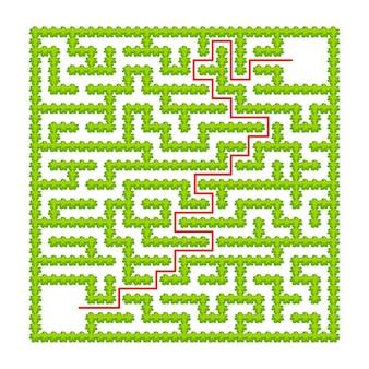 Labirinto quadrado de arbustos de jardim