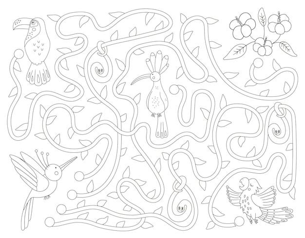 Labirinto tropical preto e branco para crianças. atividade exótica pré-escolar. quebra-cabeça de selva engraçado com papagaio bonito, poupa e tucano. ajude o pássaro a chegar ao jogo das flores.