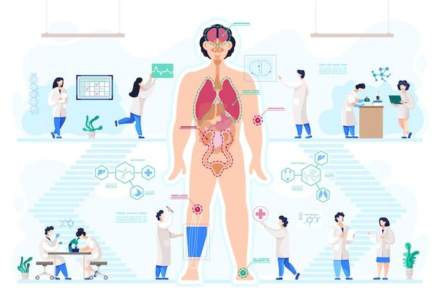 Laboratório médico, órgãos bio-artificiais, anatomia