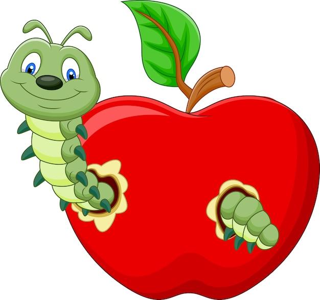 Lagartas comem a maçã