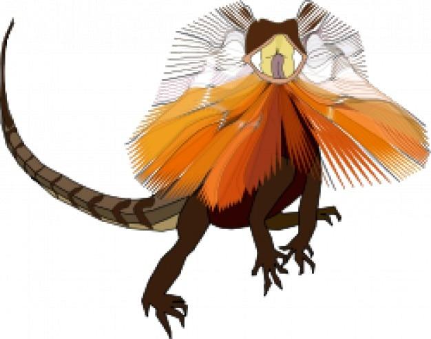 Lagarto folho de pescoço (dragão)
