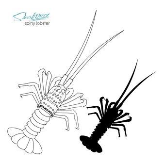 Lagosta espinhosa silhueta linear lagosta espinhosa silhueta