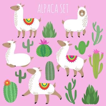 Lamas de alpaca branco mexicano e conjunto de vetores de plantas de deserto