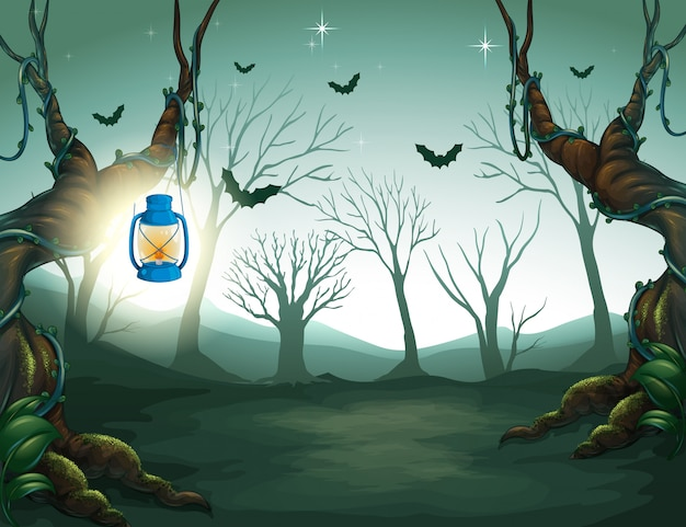 Lâmpada de luz na floresta negra