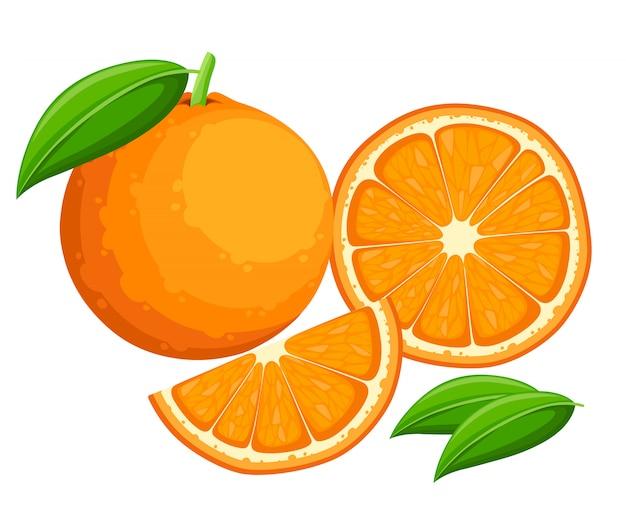 Laranja com folhas inteiras e rodelas de laranjas. ilustração de laranjas. ilustração para cartaz decorativo, produto natural emblema, mercado dos fazendeiros.