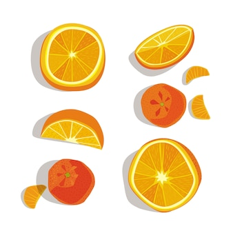 Laranjas e tangerinas inteiras e cortadas