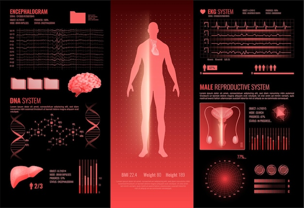 Layout de infográficos de interface médica hud com seções de informações reprodutivas masculinas ekg dna encefalografia