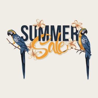 Layout de venda de verão