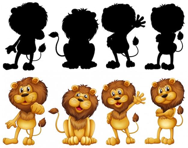 Leão com sua silhueta
