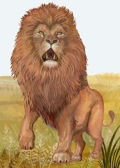 Leão desenhado de mão