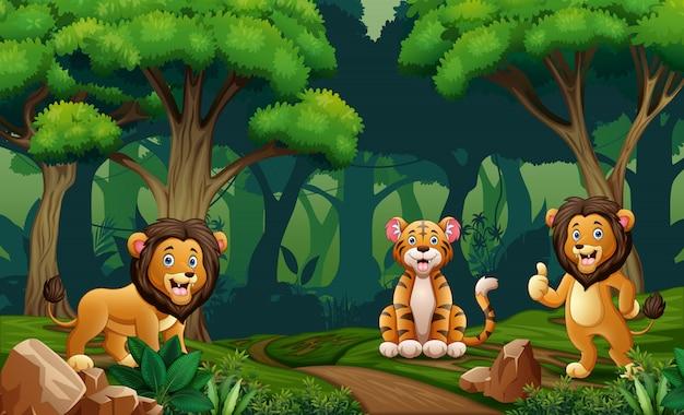 Leão e tigre vivendo na selva
