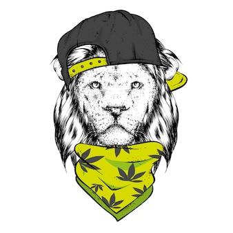 Leão em um boné