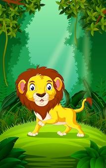 Leão na floresta clara e verde