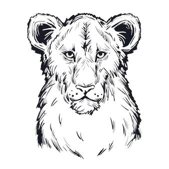Leão panthera, retrato de esboço isolado de animais exóticos. ilustração de mão desenhada.