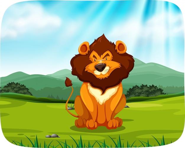 Leão sentado na pastagem