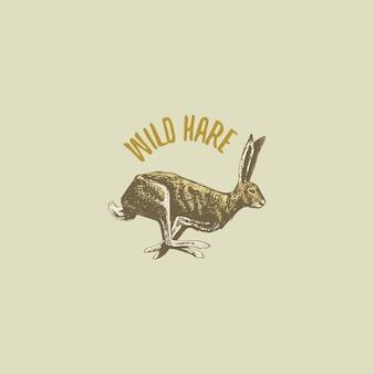 Lebre selvagem ou coelho gravado mão desenhada no velho estilo de desenho, logotipo de animais vintage