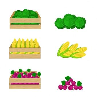 Legumes em caixas de madeira em branco