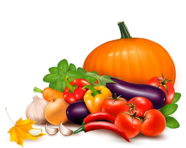Legumes frescos com folhas. alimentação saudável