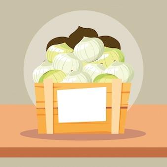 Legumes frescos de cebola em caixa de madeira