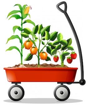 Legumes frescos e frutas no carrinho