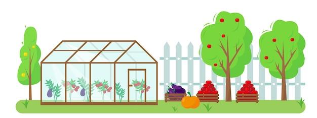 Legumes, frutas e estufa no jardim. conceito de jardinagem e colheita. banner de outono ou verão ou ilustração de fundo.