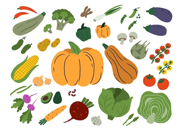 Legumes isolados no fundo branco. conjunto de abobrinha, champignon, berinjela, batata, abóbora, tomate etc. ilustração plana.